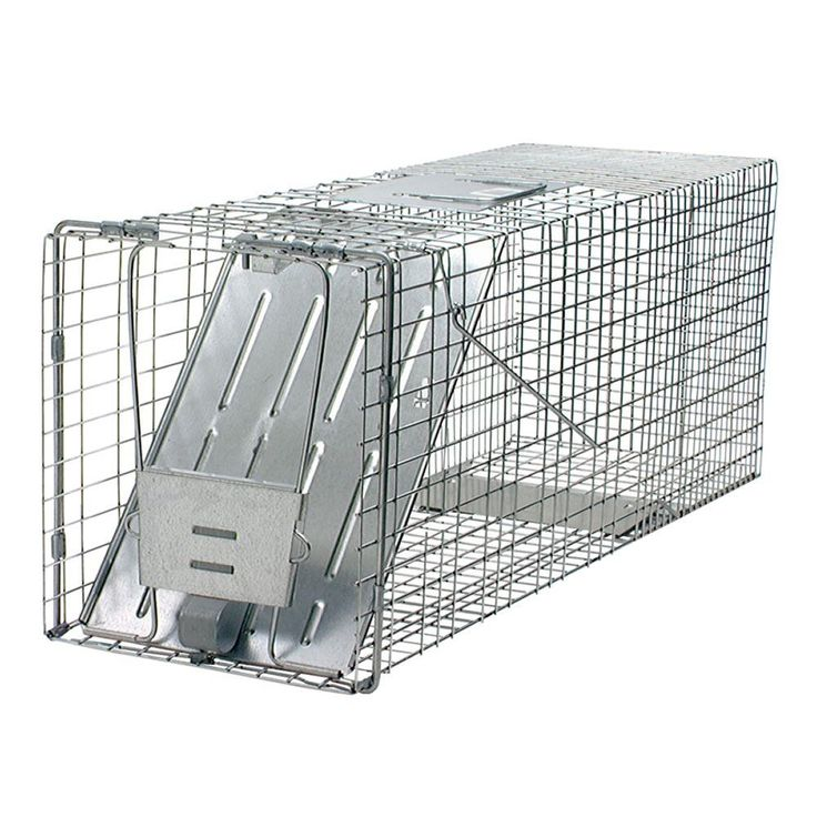 Havahart Large 1Door Live Animal Cage Trap1079 The