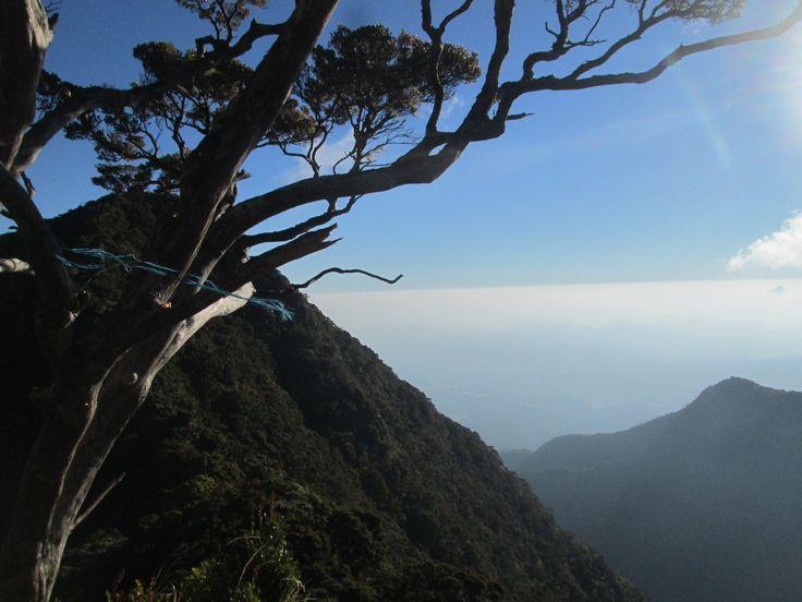 Gunung Lompobattang  2.870 Mdpl. Kab. Gowa, Prov. Sulawesi Selatan, Indonesia