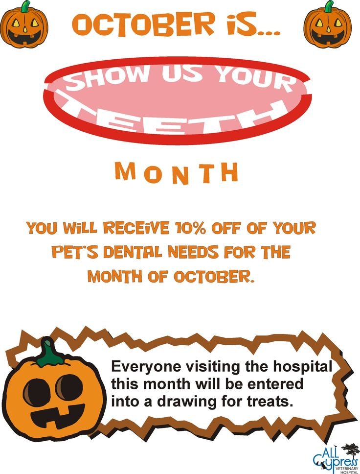 October is show us your teeth month veterinary