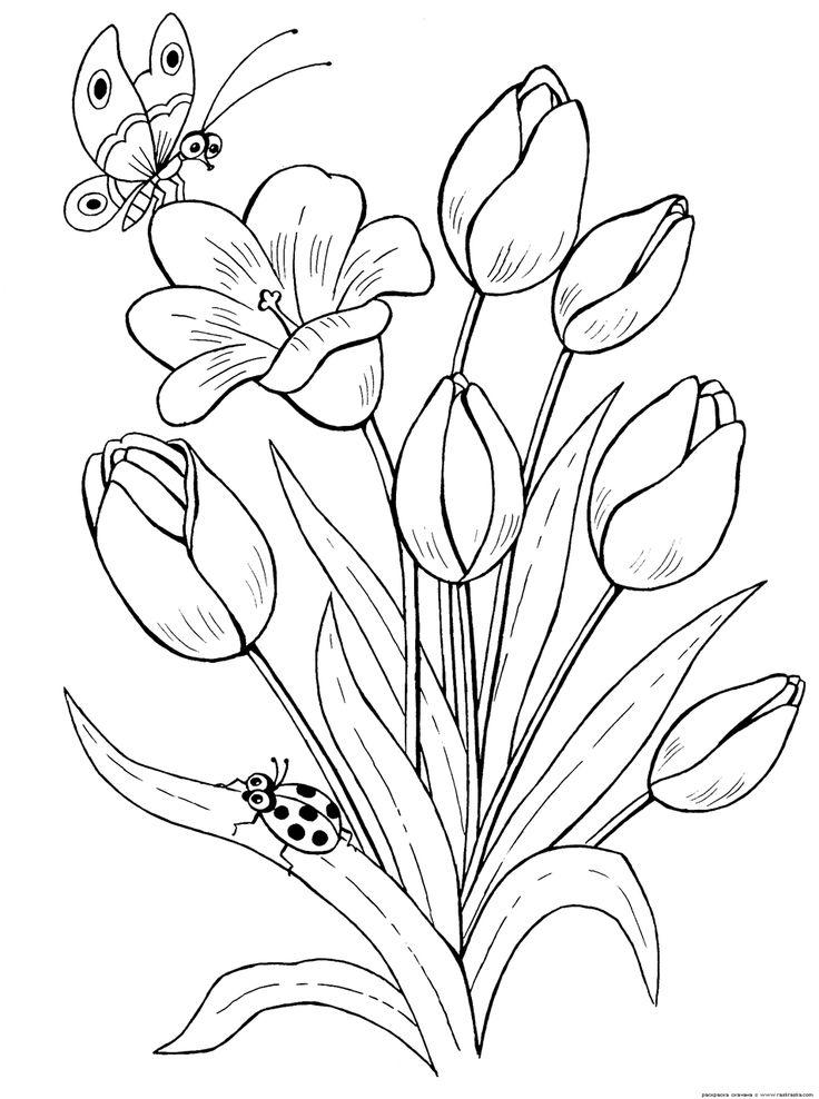 Las 25 Mejores Ideas Sobre Flores Blanco Y Negro En Pinterest Ms