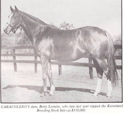 Betty Loraine(1965)(Filly) Prince John- Gay Hostess By Royal Charger. 5x5 To Tracery, 5(F)x5(F) To Blenheim II & Gainsborough. 20 Starts 7 Wins 2 Seconds 2 Thirds. $33,865. 3rd Junior Miss S.