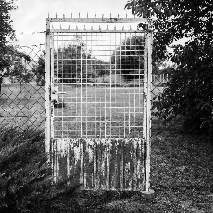 rusty gate Hasselblad 500C/M Planar 80mm 2.8  Ilford HP5 pushed to 1600 developed in LC29  14min 20deg 119 gate rustic rusty old vintage rural hasselblad fence 500cm 80mm planar film analog buyfilmnotmegapixels filmisnotdead grain push hp5 ilford lc29 1600 carl zeiss