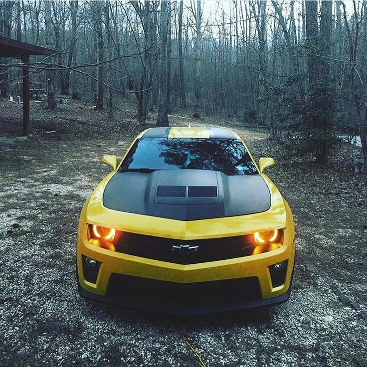 Monster In Woods. ##camaroforlife   Nytmare GT   Google+. Chevy CamaroSupercarsMonstersBikingAll  ...