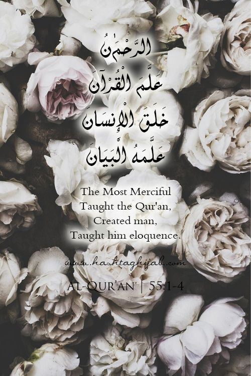 Islamic Daily: Eloquence