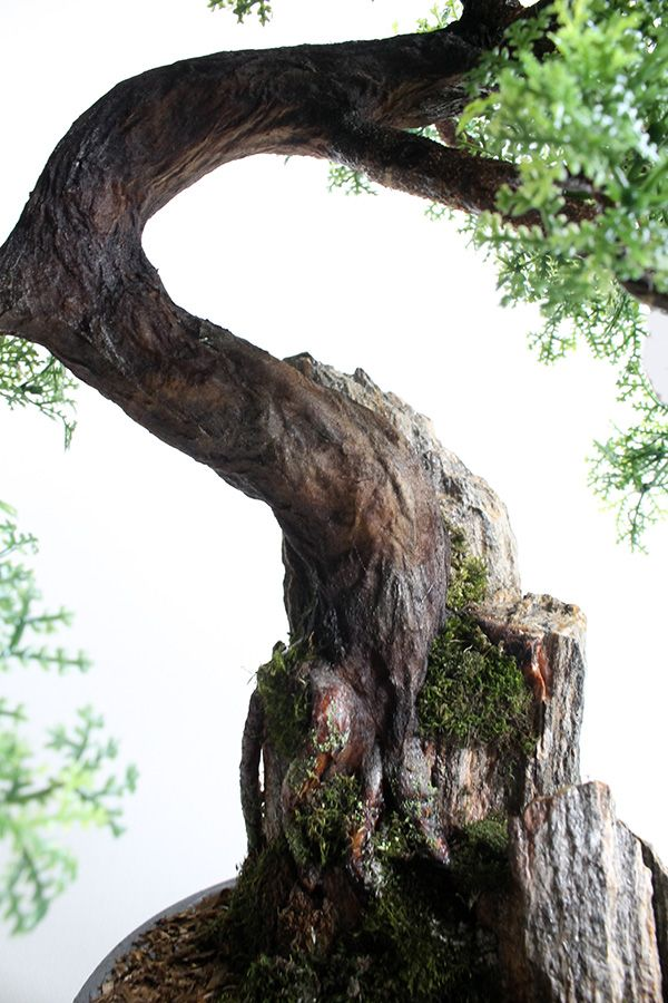 Drzewko bonsai zokei ręcznie wykonane