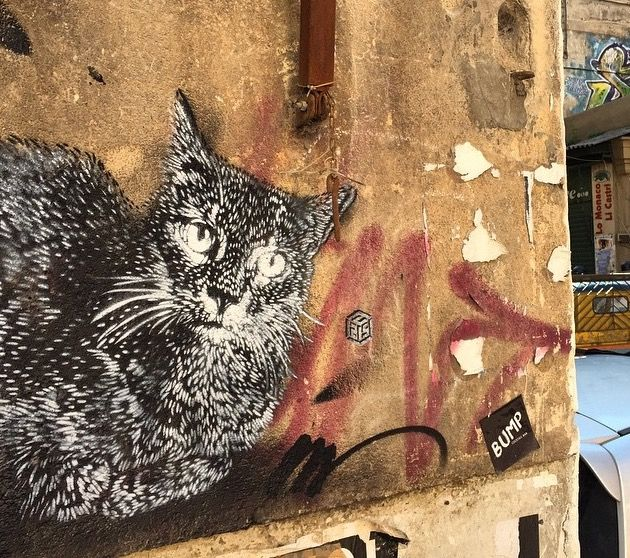 by C215 in Palermo (LP)