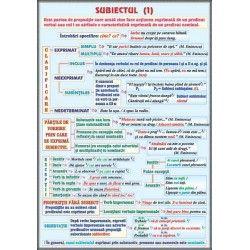 Subiectul (1) / Clasificarea operelor literare