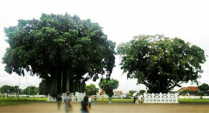 Alun-alun Yogyakarta