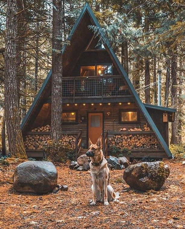 53 Best Hunting Cabin Images On Pinterest