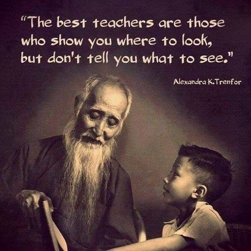 The best Teachers are those who show you where to look, but don't tell you what to see.
