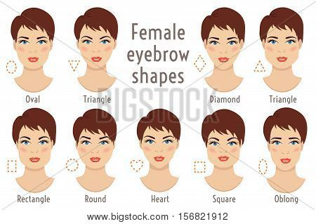 Set of vector eyebrow shapes. Eyebrows that are suited to different types of woman face. Set of illustrations with captions. Various forms of woman faces. Stock vector illustration. poster