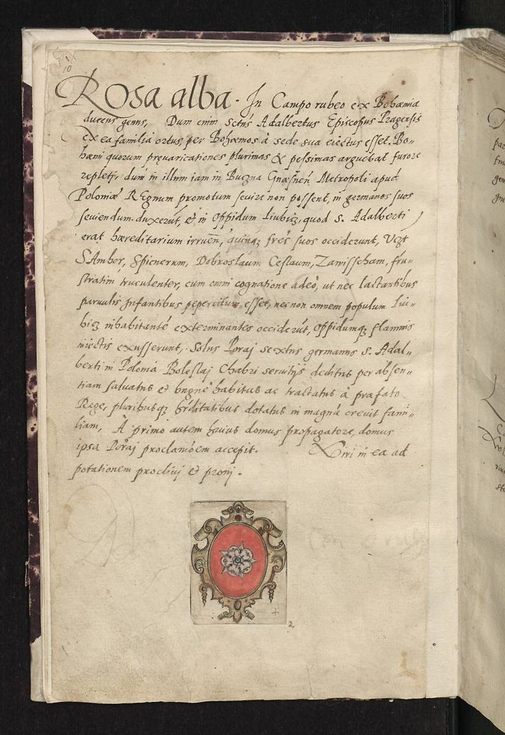 Herb Róża - Arma baronum Regni Poloniae per Joannem Długosz descripta