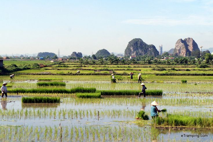 5 top Places not to miss in Vietnam - Stunning Ninh Binh.