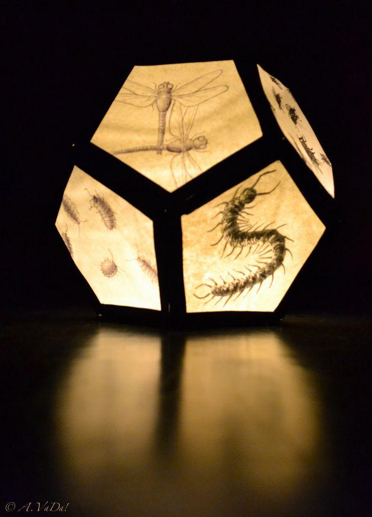 Nieuwsgierig Aagje: Opdracht Beeld: Lampion met insecten