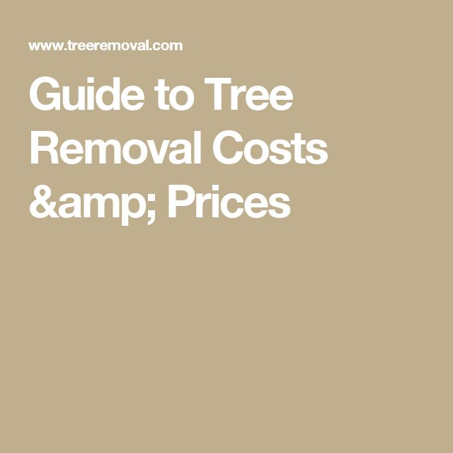Guide to Tree Removal Costs & Prices