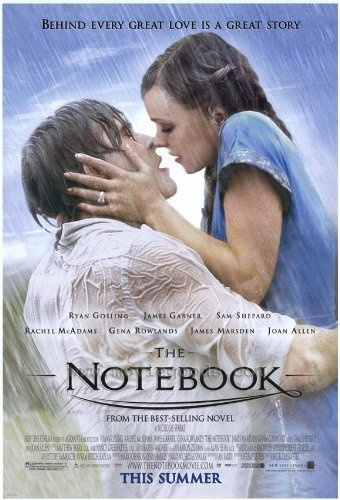 The Notebook: Film, Romantic Movies, Tracks Fall, The Notebook, Favorite Movies, Notebooks, Romance Movie, Young Couple