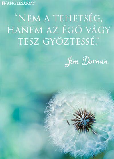 Jim Dornan gondolata a tehetségről. A kép forrása: Angels' Army # Facebook