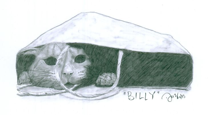 """""""Somebody say food"""" - Bill the cat"""