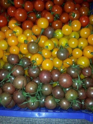 Mix cherry tomato