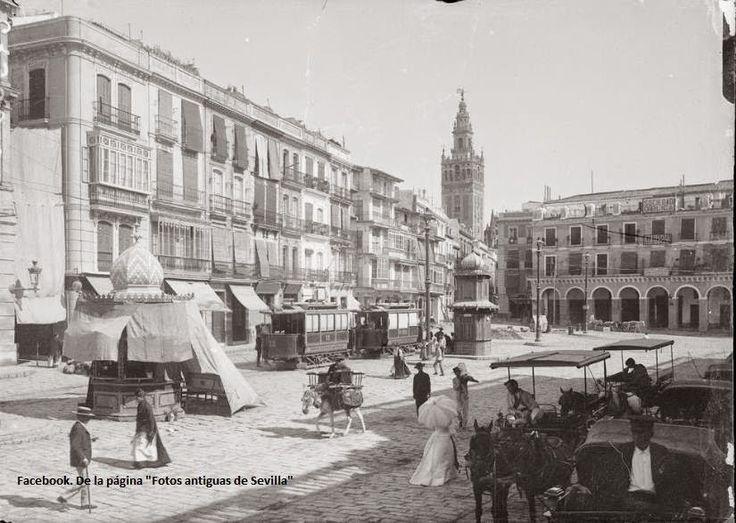 Fotos antiguas de Sevilla: Plaza de San Francisco y Ayuntamiento. 1902-1917 Reinado de Alfonso XIII.