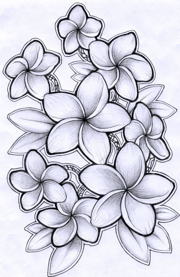 Here is more Plumeria but I like the more natural look of the other one better. Somewhere halfway would be perfect.