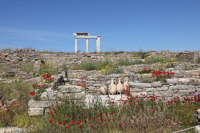 Delos in the Spring