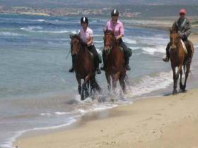201312101431430.Paardrijden Sardinie - Vakantie Sardinie_1395358583__fi_280x300x1x1.jpg 280×210 pixels