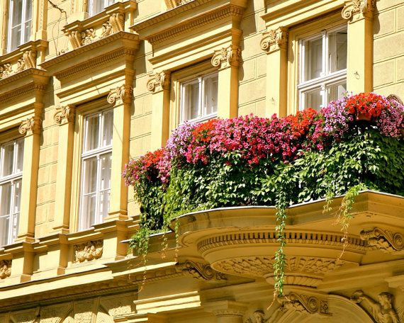 1000+ images about Architecture ~ Windows/Balconies on Pinterest ...