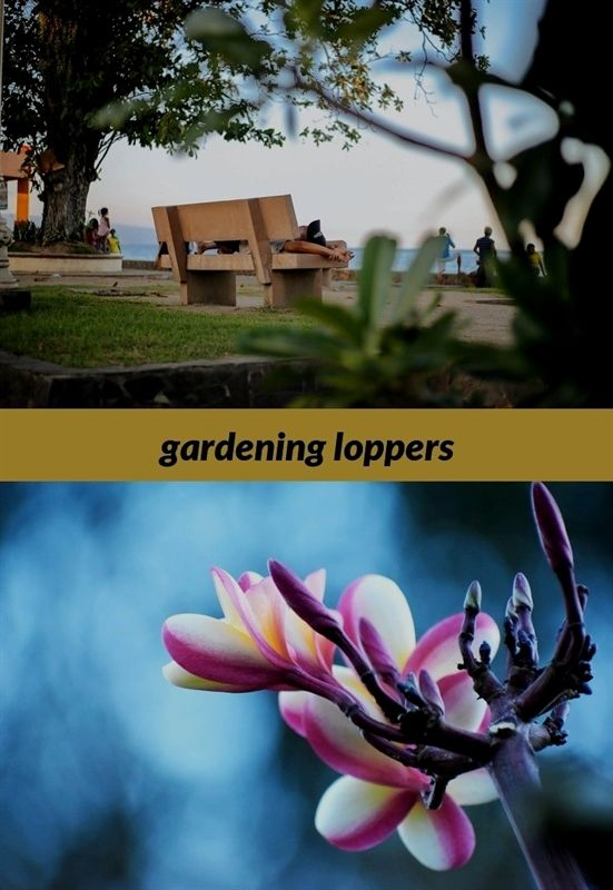 Gardening Loppers 487 20180915180510 53 Gardening Notes From The