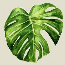 Philodendron Art Print by George Sand Studio