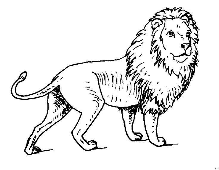 malvorlagen mandala löwe  ausmalbilder
