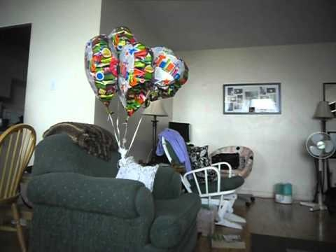 Balloons floating through my apartment