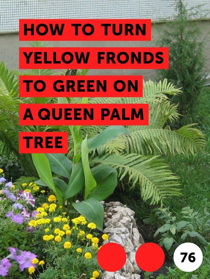 a7db53f00179ef7d57d2ed1531d9ec11 - What Type Plants Are Suitable For Micro Gardening