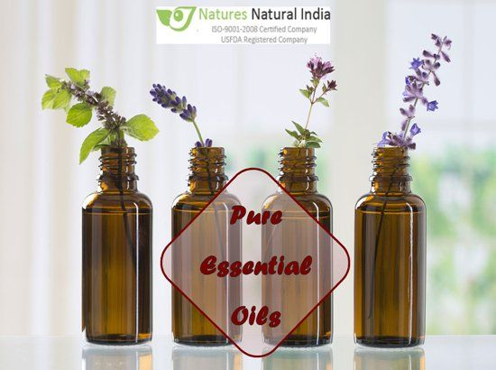 Find best fragrances of Pure Essential Oil online at Naturesnaturalindia.com