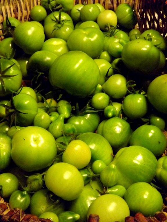 Que faire de ses tomates vertes ?