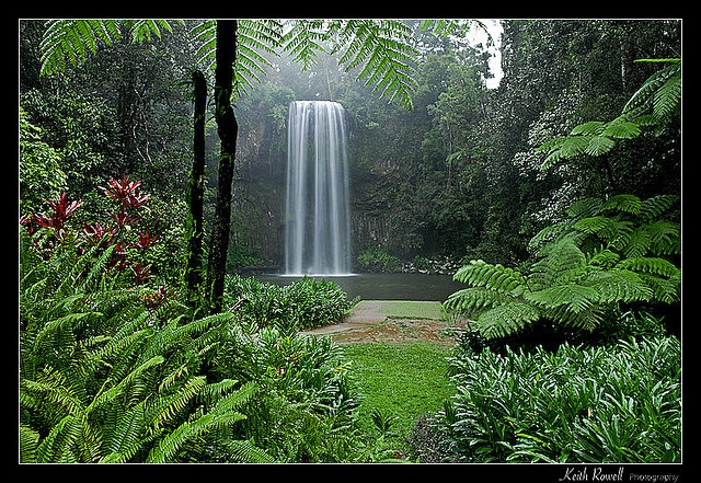 """Millaa Millaa Falls, Australia. (Fun fact: This is the waterfalls where Peter Andre shot the music video """"Mysterious Girl"""".)"""