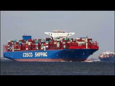COSCO SHIPPING TAURUS | Elbe Höhe Otterndorf - YouTube