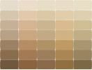Sherwin-Williams Paint Color Swatches | Sherwin Williams paint swatches