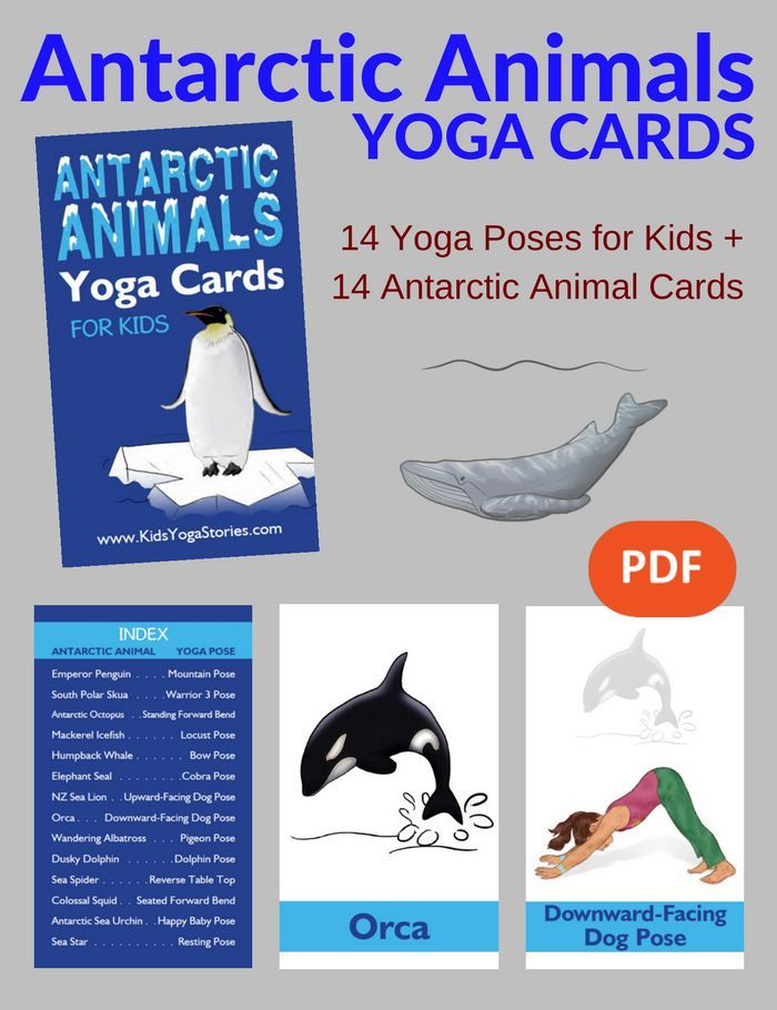 Learn about Antarctic animals through these simple and fun yoga poses for kids! Download and print out to use in your home, studio, or classroom today. | Kids Yoga Stories