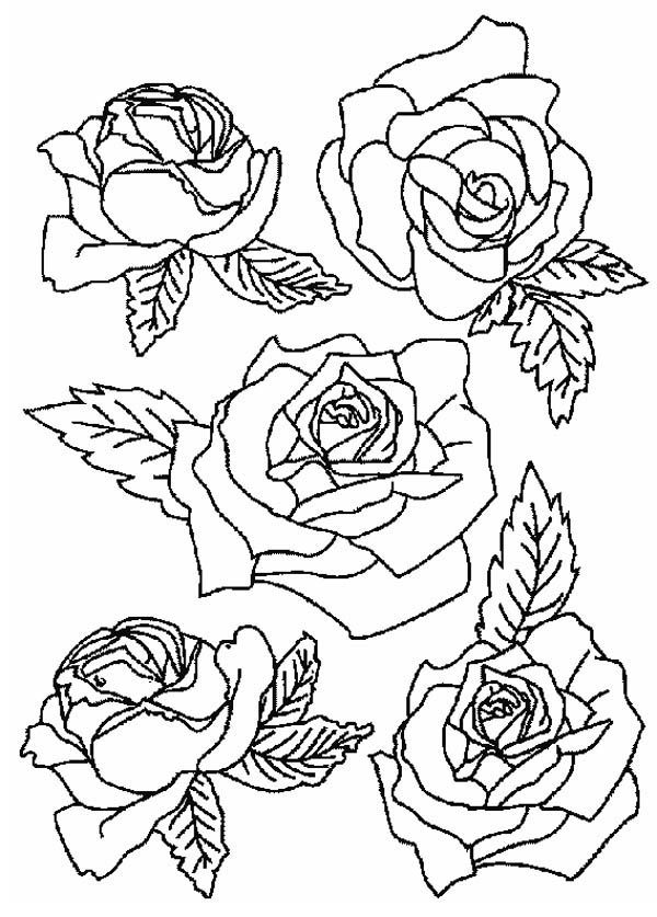 Picture Of Roses For Flower Bouquet Coloring Page : Color ...