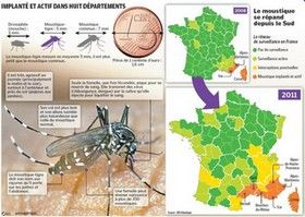 Carte de présence Moustique Tigre France, cote azur, marseille, nice, aix en provence, toulon, var, alpes maritimes, 2009, 2010, 2011, 2012, 2013, 2014 | Moustique tigre