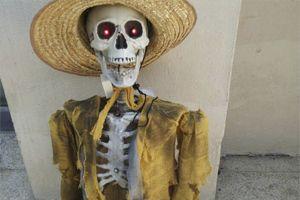 Человеческий Скелет Для Вечеринок