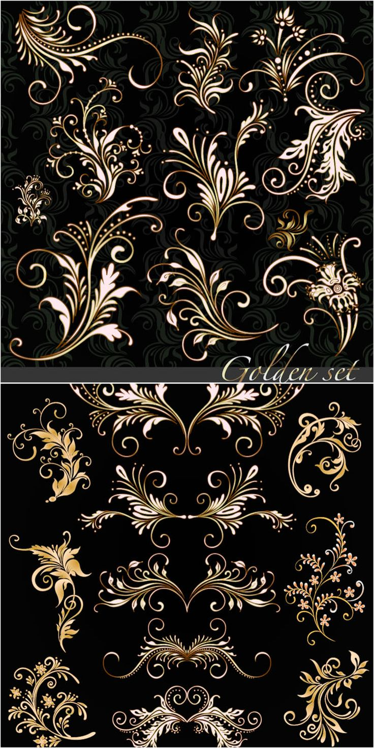 Golden floral ornaments vector