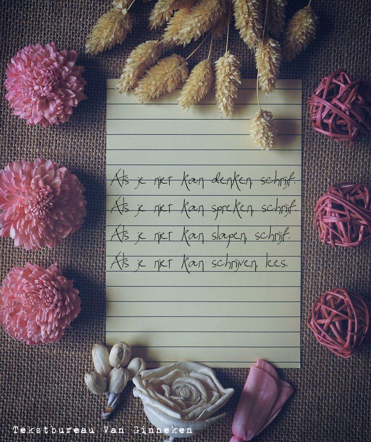 Als je niet kan denken, schrijf. Als je niet kan spreken, schrijf. Als je kan slapen, schrijf. Als je niet kan schrijven, lees.