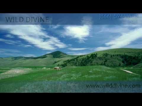 http://www.wilddivine.com Guided meditation is an integral part of my daily ritual, and sometimes its a nice way to relax. This ocean guided meditation with Deepak Chopra is about natural beauty and finding your own inner beauty through mindfulness, and further it is about taking that with you into the world everyday. For more guided meditation... #Meditation #DeepakChopra