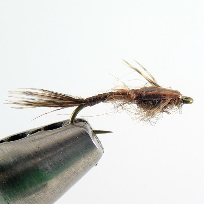 Brown Baetis Nymph - Duranglers Fly Fishing Shop & Guides