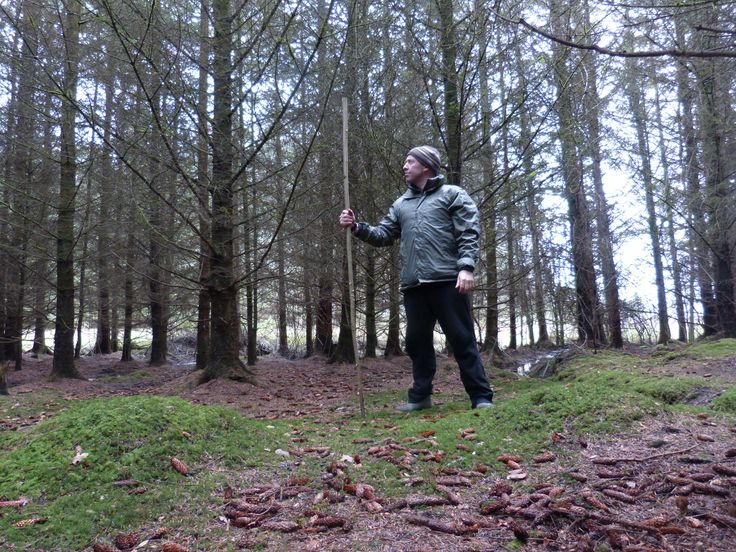 About to cut a long, willow branch to the correct length for a walking staff, Portumna Forest Park (Photo: Sean Fagan).