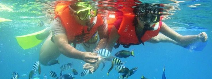 Paket Honeymoon Karimunjawa Super Romantis >>>