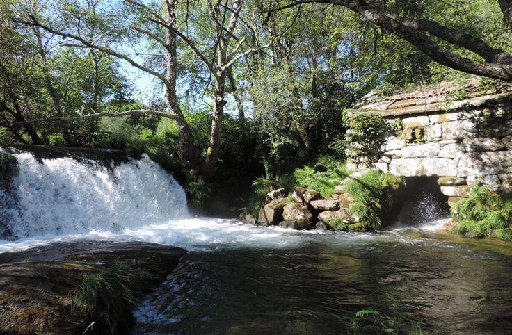 El río Almofrei oculta en Cotobade una fervenza conocida como Pozo Negro, rodeada de molinos.