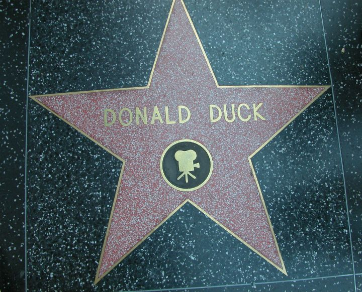 Donald Duck Hollywood Walk of Fame Star